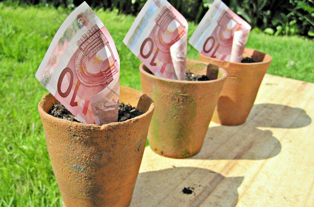 Écolo en campagne : bien dépenser pour moins dépenser